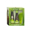 Macadamia Natural Oil No Tangle Trio Set (Model: M5771)