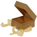 GETI BEAUTY Metallic Gold Square Box w / Ribbon