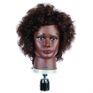 HAIRART Deluxe Mannequin Curly Hair  43-008