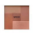 PALLADIO Spice Mosaic Face Powder  PM03