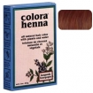 COLORA Henna Powder 2oz ASH BROWN  FS9004