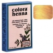 COLORA Henna Powder 2oz LIGHT BROWN FS9011