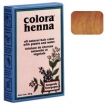 COLORA Henna Powder 2oz GOLD BROWN  FS9003