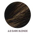 UMBERTO BEVERLY HILLS U Color Hair Color Kit 6.0 Dark Blonde