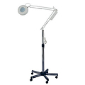 PIBBS 2505 Skin Care Magnifying Lamp  2010